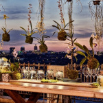 Katy's Palace Bar | Sunset View Over Jozi | GlamCam
