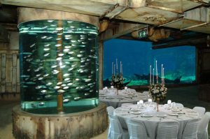 Ushaka Marine World Event Venue | GlamCam